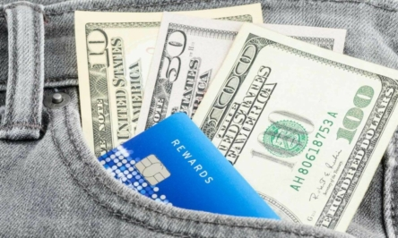 Cash Back Credit Cards and Their Functionality